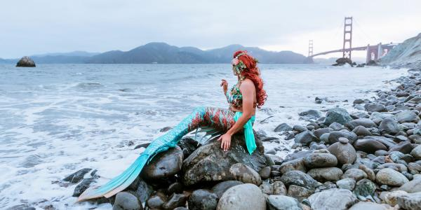 Job diary: I'm a professional mermaid…