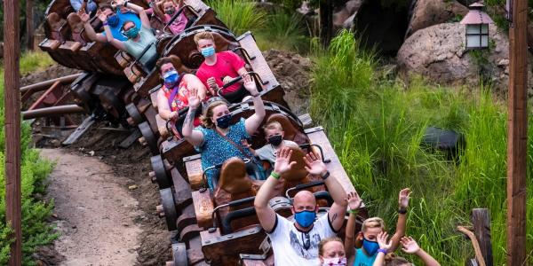 Here are all the Walt Disney World rides…
